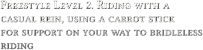 Freestyle Level 2. Riding with a casual rein, using a carrot stick for support on your way to bridleless riding